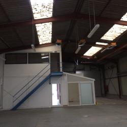 Vente Local d'activités Chambray-lès-Tours 1397 m²
