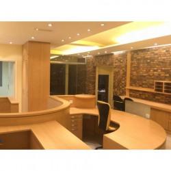 Location Local commercial Barjouville 255 m²