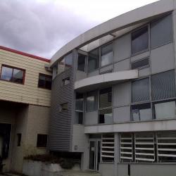 Vente Local d'activités Corbas 1543 m²
