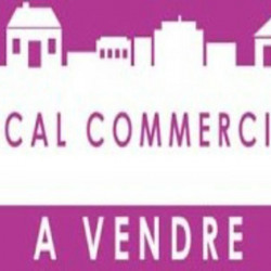 Vente Local commercial L'Étang-Salé 162 m²