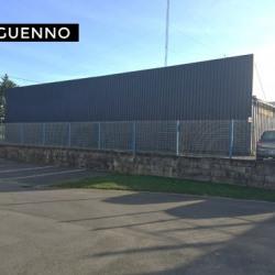 Vente Local d'activités Vern-sur-Seiche 500 m²