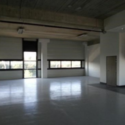 Location Local d'activités Saint-Denis 231 m²