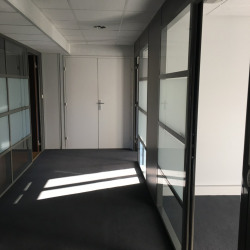 Vente Bureau Lyon 9ème 100 m²