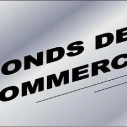 Vente Local commercial Castres 356 m²