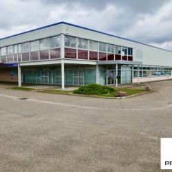 Location Entrepôt Saint-Étienne-du-Rouvray 745,44 m²