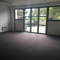 Location Bureau Montigny-le-Bretonneux 172 m²