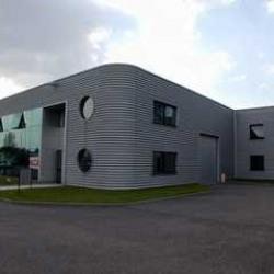 Location Local d'activités Hœnheim 282 m²