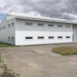 Vente Entrepôt Saint-Aignan-Grandlieu 800 m²