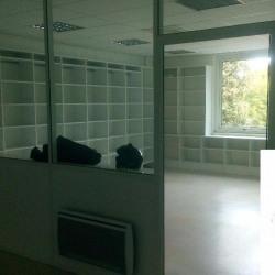 Location Bureau Balma 172 m²