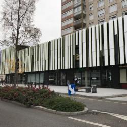 Vente Local commercial Mulhouse 320 m²