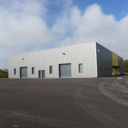 Location Local d'activités Delle 300 m²