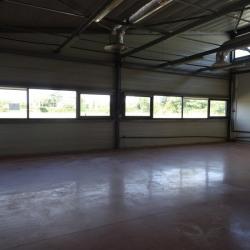 Location Bureau Toulouse 490,1 m²
