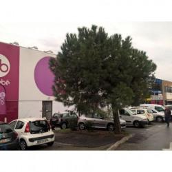 Location Local d'activités Nice 39 m²