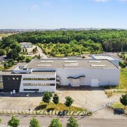 Location Local d'activités Chaponnay 3300 m²