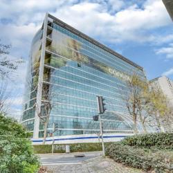 Location Bureau Courbevoie 41691 m²