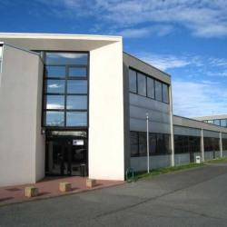 Vente Bureau Toulouse (31300)