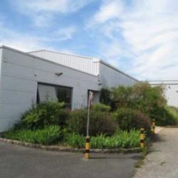 Vente Local d'activités Bernes-sur-Oise 1783 m²
