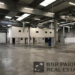 Location Local d'activités Grigny 1804 m²