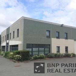 Location Local d'activités Wasquehal 408 m²