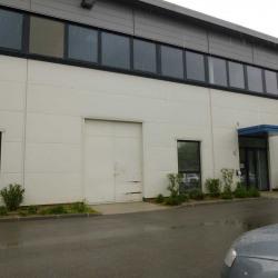 Location Local d'activités Rousset 320 m²