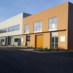 Location Entrepôt Bussy-Saint-Martin 387 m²