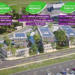 Location Bureau Montpellier 34000 Bureaux A Louer Montpellier 34