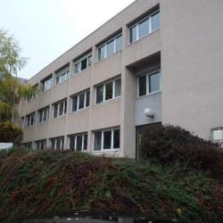 Location Bureau Saint-Martin-d'Hères 435 m²