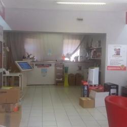 Vente Local commercial Labarthe-sur-Lèze 230 m²