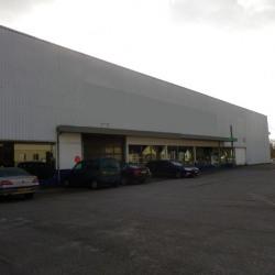 Location Local commercial Brive-la-Gaillarde 2500 m²