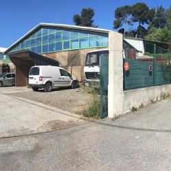Location Entrepôt Carros 550 m²