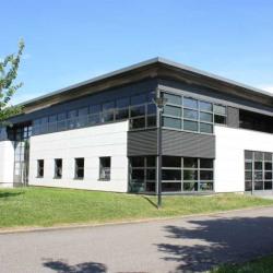 Location Bureau Schiltigheim 491 m²
