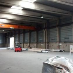 Location Local d'activités Décines-Charpieu 1400 m²