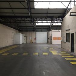 Location Local d'activités Gonfreville-l'Orcher 435 m²