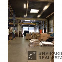 Vente Local d'activités Tauxigny 3938 m²