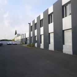 Location Bureau Saint-Jean-de-Védas 66 m²