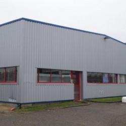 Location Local d'activités Saint-Jean-de-Braye 1131 m²