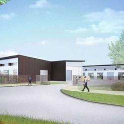 Vente Local d'activités Ferrières-en-Brie 910 m²