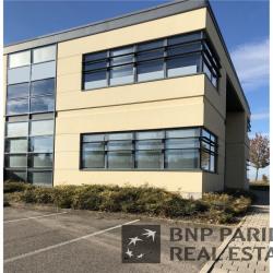 Location Bureau Villers-lès-Nancy 557 m²