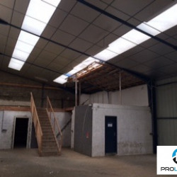 Location Local commercial Vergetot 650 m²