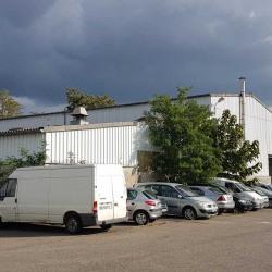 Vente Local d'activités Mundolsheim (67450)