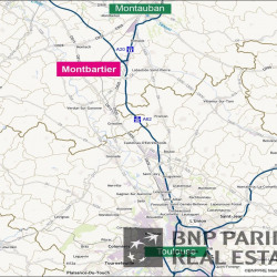 Location Entrepôt Montbartier 65500 m²