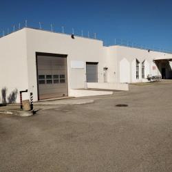 Location Local d'activités Lyon 7ème 1208 m²