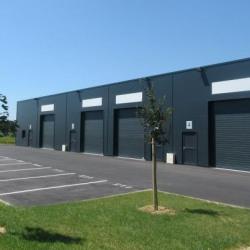 Vente Local d'activités Saint-Martin-du-Manoir 145 m²
