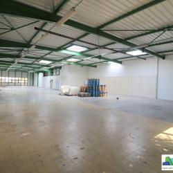 Location Local d'activités Saint-Thibault-des-Vignes 1051 m²