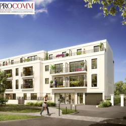 Location Local commercial Thiais (94320)