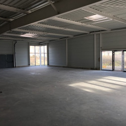 Location Local commercial Reims 350 m²