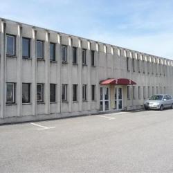 Location Bureau Saint-Martin-d'Hères 331 m²