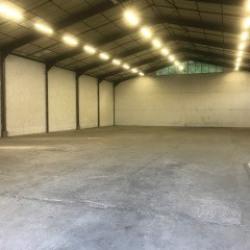 Location Local d'activités La Buisse 700 m²