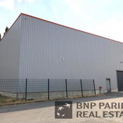Vente Local d'activités Gondecourt 497 m²