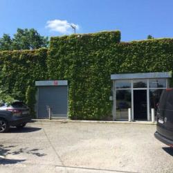 Vente Local d'activités Toulouse 500 m²